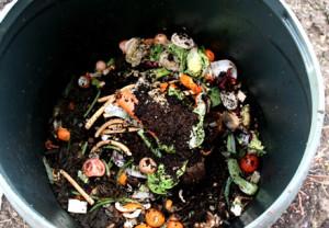 Composting and Food Scrap Odor Conrol