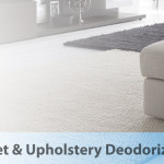 Carpet odor control